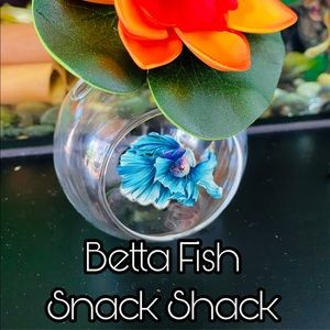 Betta Fish Snack Shack spring collection
